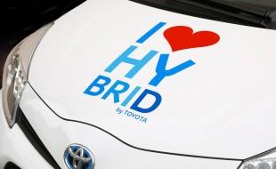 hybrid-428183_960_720-3